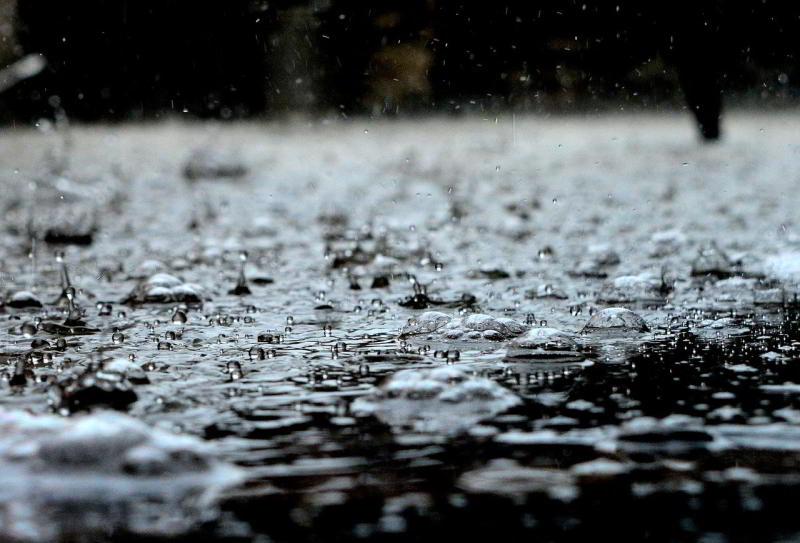 deževnica